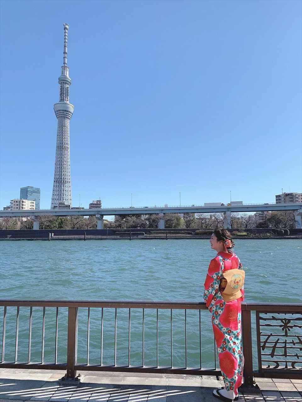 Shimizu Himawari 清水ひまわり